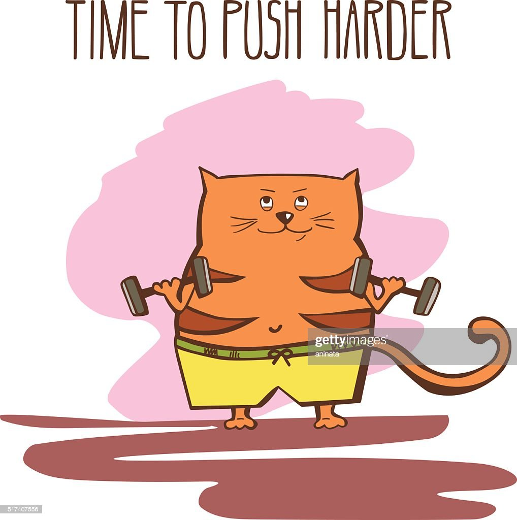 Vector illustration with a fat cat with dumbbells and weights