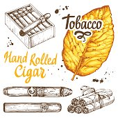 Vector illustration with classical smokeking set. Bunch of tobacco and
