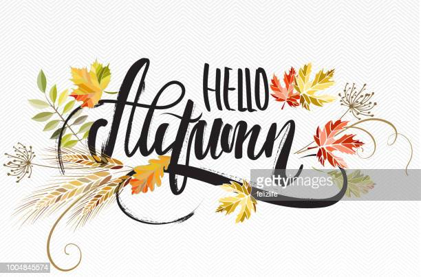 vector illustration with lettering hello autumn - welcome sign stock illustrations