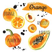 Vector Illustration with only orange fruits & vegetables.