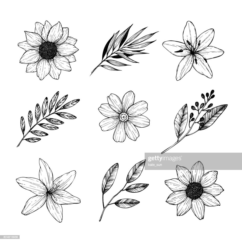 Vector illustrations - Floral set (flowers, leaves and branches). Hand drawn design elements in sketch style. Perfect for invitations, greeting cards, tattoo, prints etc