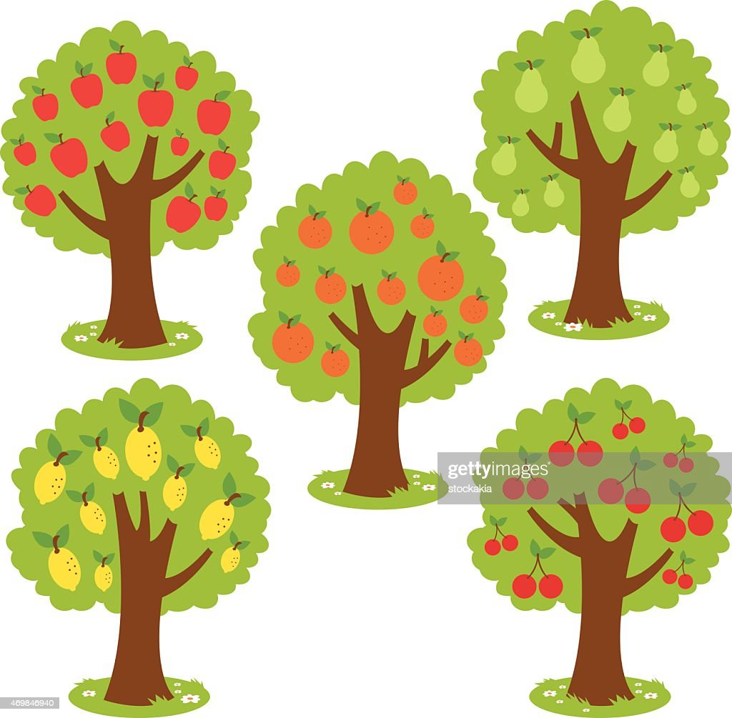 Vector illustrations of various fruit trees