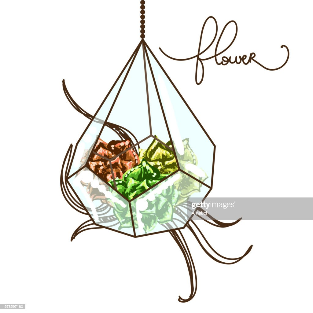 Vector illustrtion with vase and succulent