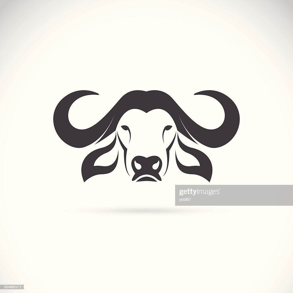 Vector image of an buffalo head