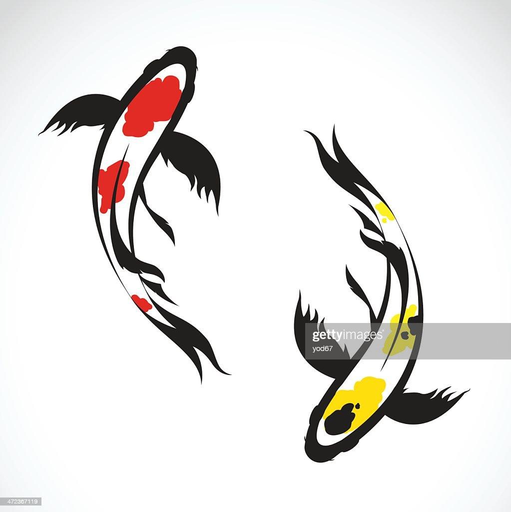 Vector image of an carp koi