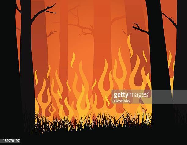 ilustrações de stock, clip art, desenhos animados e ícones de incêndio florestal - desmatamento