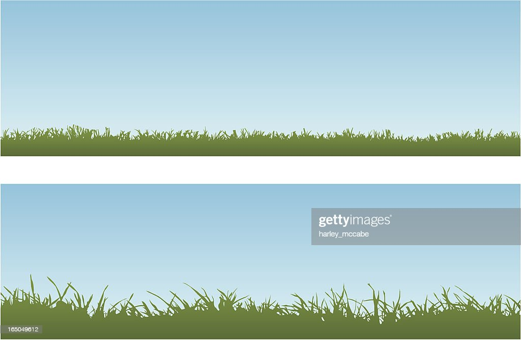 Vector image of long and short grass against a blue sky