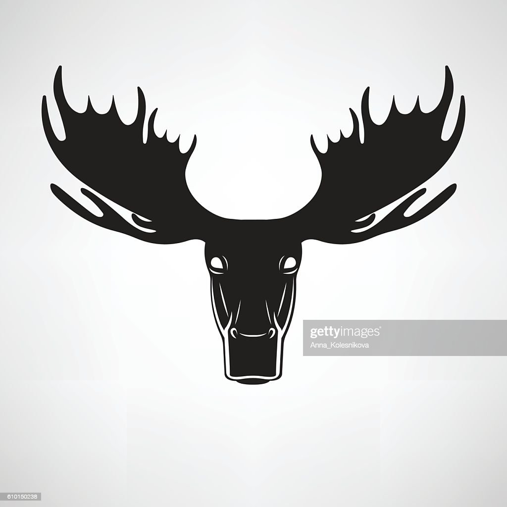 Vector images of moose deer head on a white background