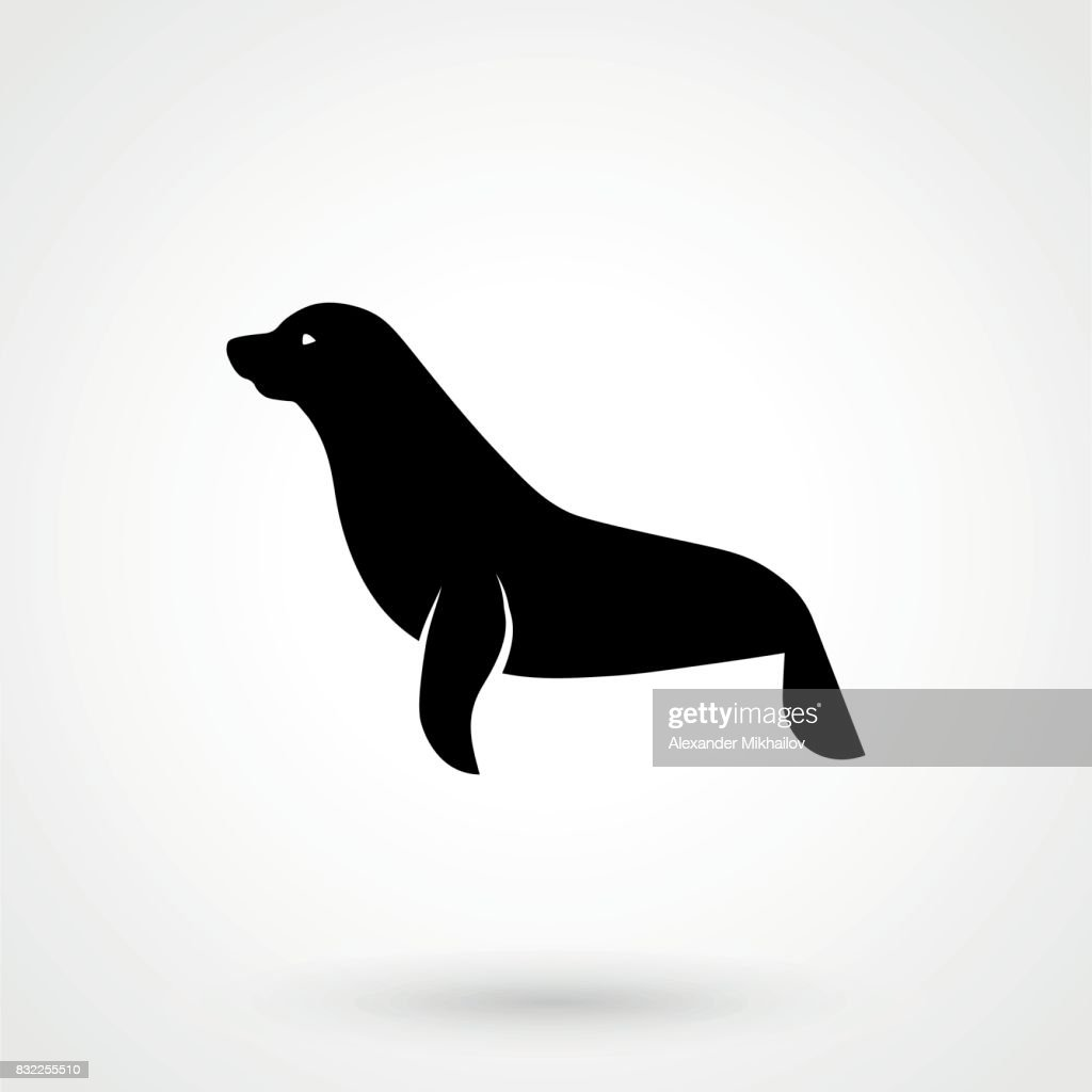 Vector images of sea lion on a white background