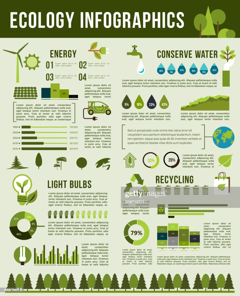 Vector infographics template of nature ecology
