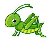 Vector isolated cute green grasshopper.