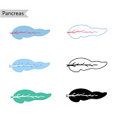 Vector isolated illustration of pancreas