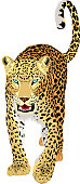 vector isolated leopard or jaguar
