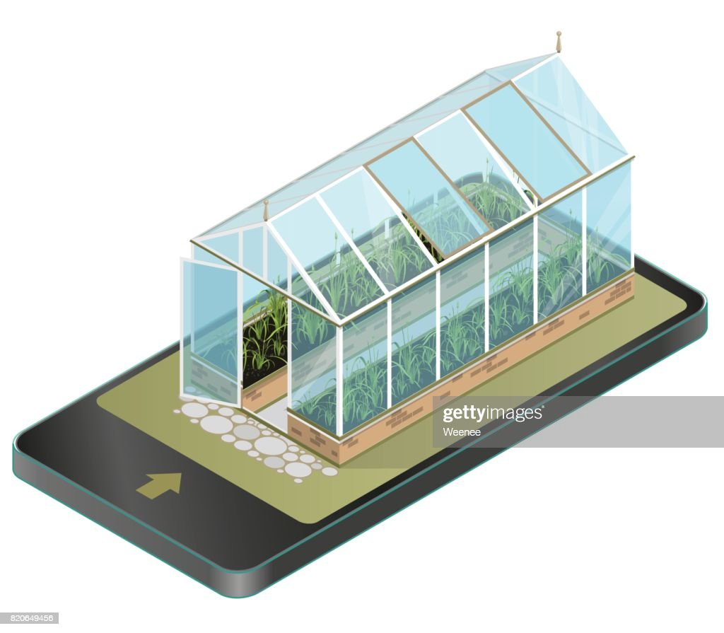 Vector isometric greenhouse with glass walls in mobile phone, isometric perspective.