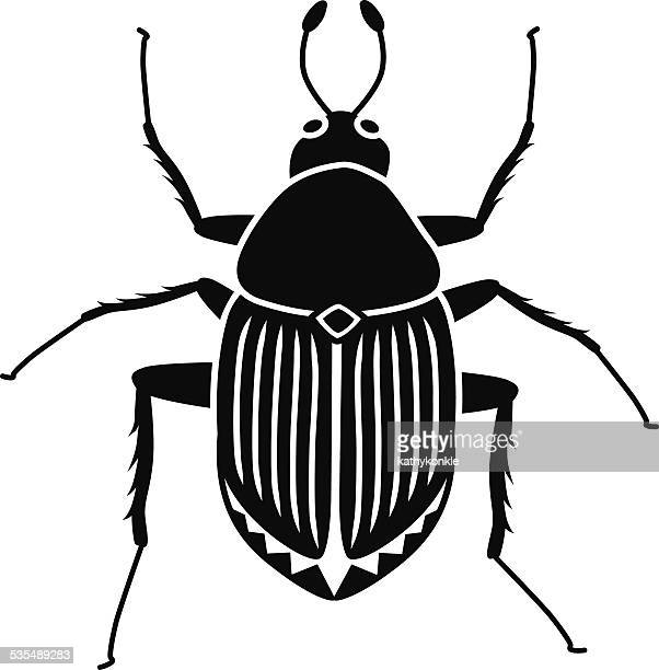 vector Japanese beetle in black and white