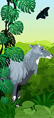 Vector Jungle rainforest vertical baner with male nilgai - blue bull and butterfly