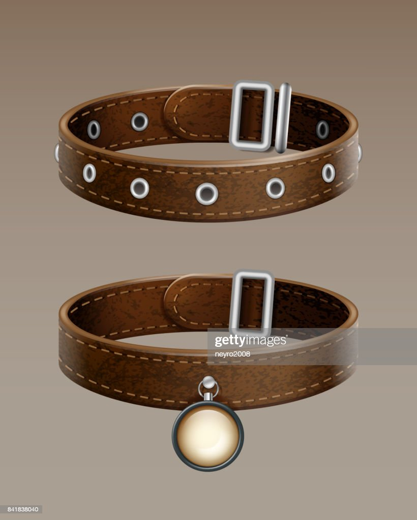Vector leather collar