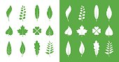 Vector leaves icon set on white background and on green background
