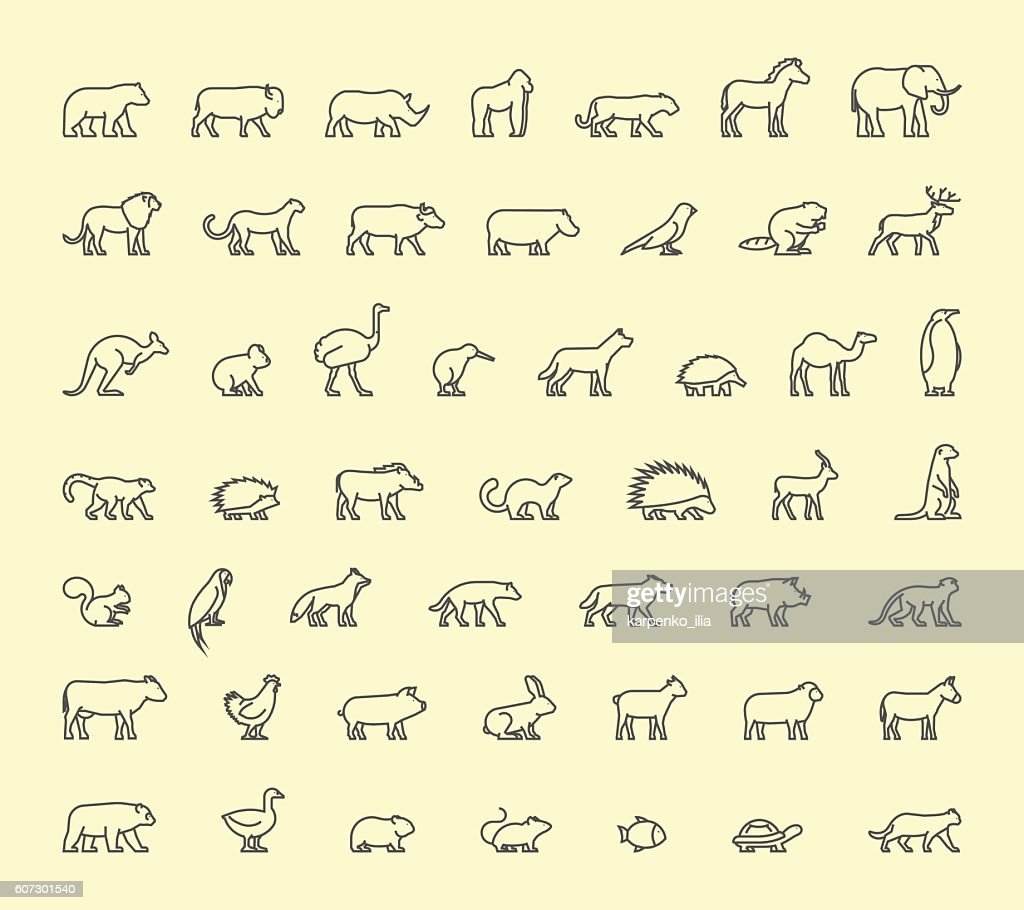 Vector line icon wild animals