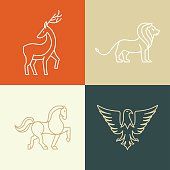 Vector linear icons and logo design elements