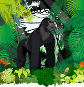 vector male gorilla in jungle rainforest