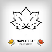 Vector maple leaf icon Autumn leaves Canada symbol. Line design