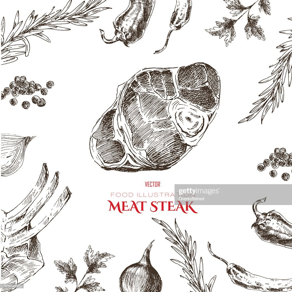 vector meat steak sketch drawing designer template. food hand-drawn