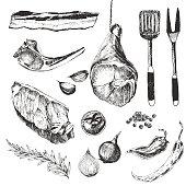 vector meat steak sketch drawing designer template. grilled lamb rib