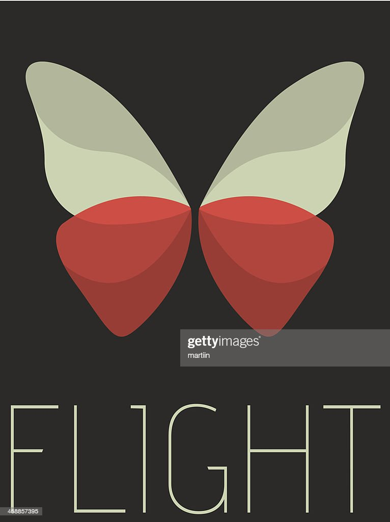 Vector Minimal Design - Flight