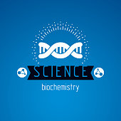 Vector model of human DNA, double helix. Bioengineering and genetics conceptual vector sign, laboratory research symbol.