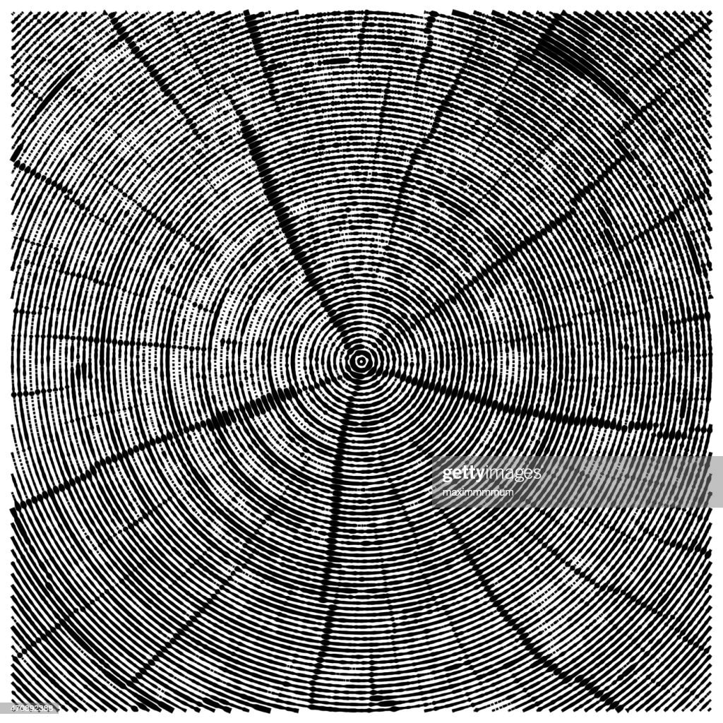 vector natural illustration of engraving saw cut tree trunk.