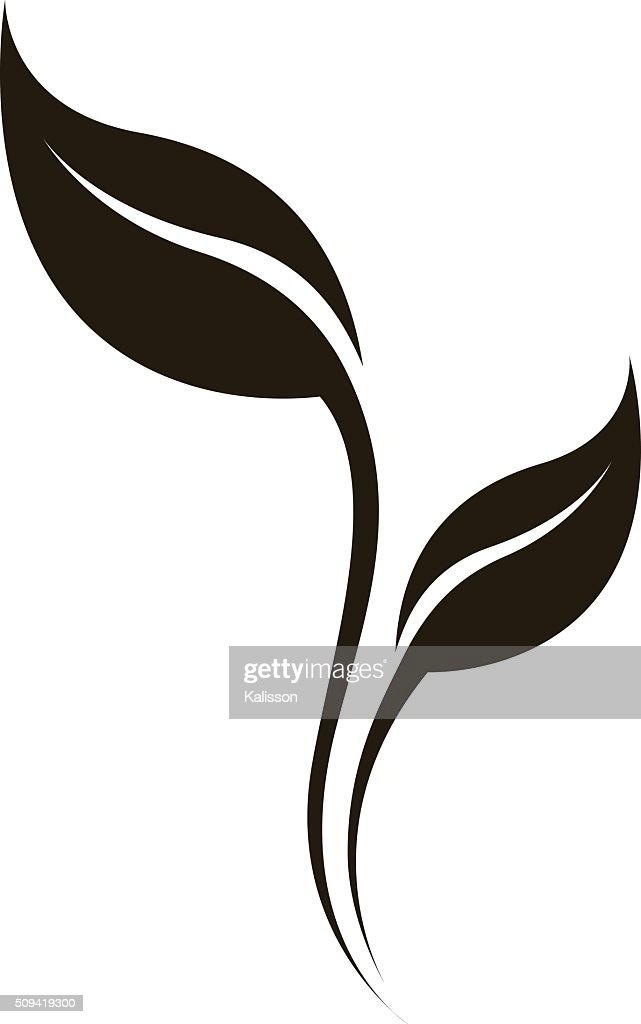 Vector natural silhouette of leaf isolated on white.