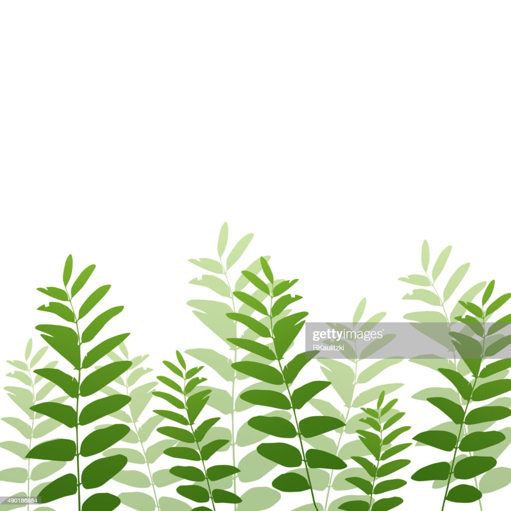 Vector Nature Backgrouund with Green Plants