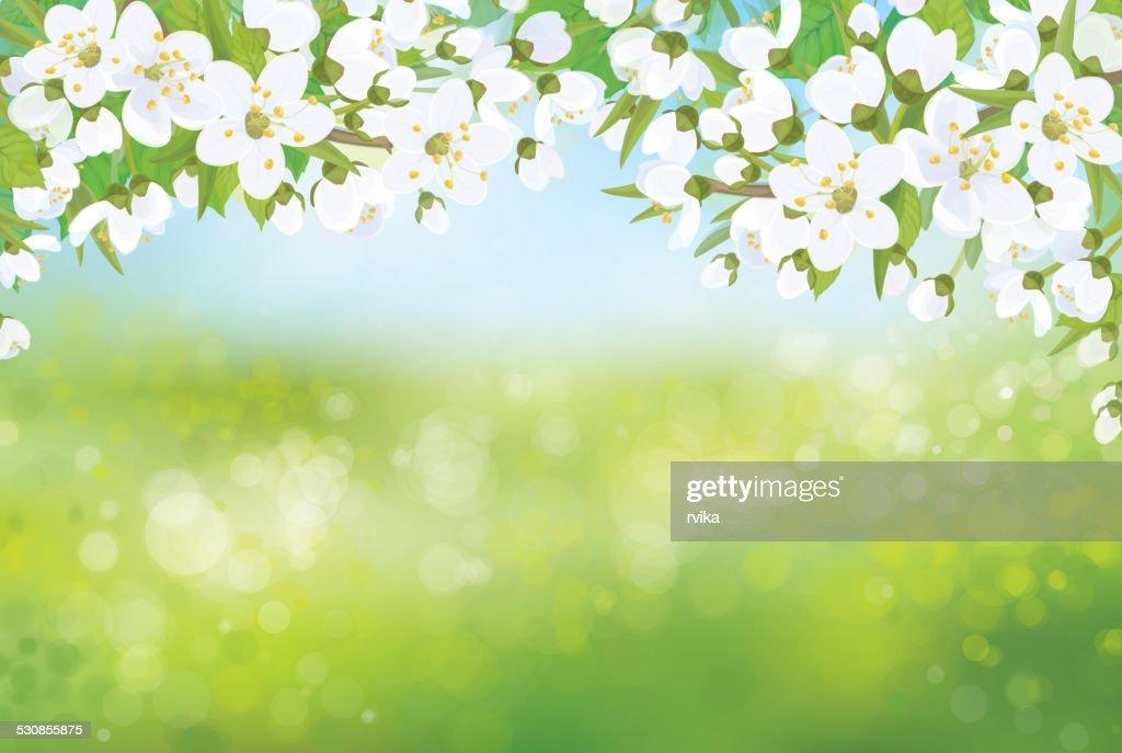 Vector nature spring floral background.