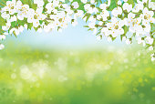 Vector nature spring floral background.