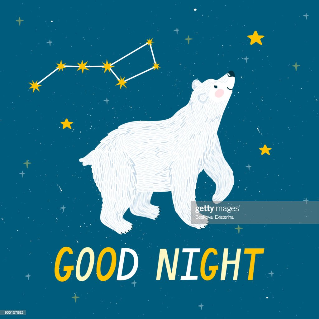 Vector night background with polar bear, Ursa Major, stars and text 'Good night'. Cute childish poster with animal. Sweet dreams.