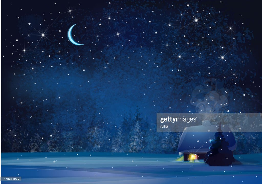 Vector night winter landscape.