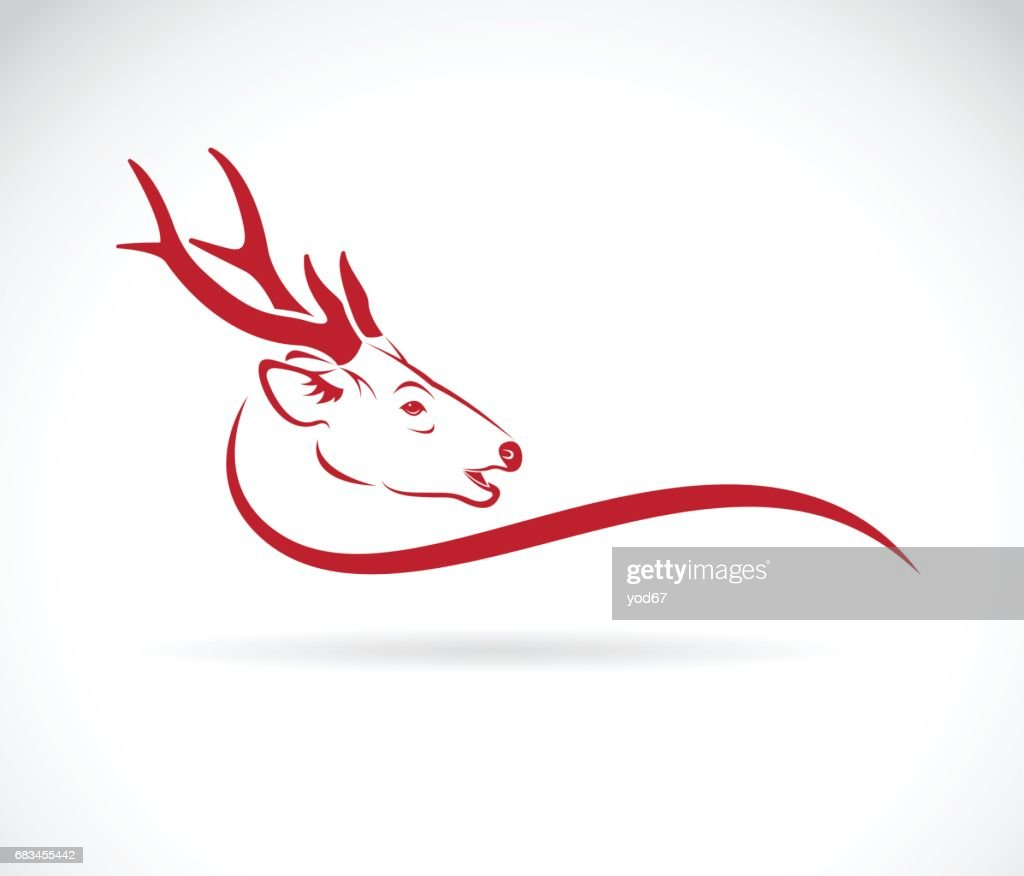 Vector of a deer head on a white background. Wild Animals