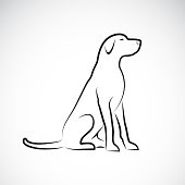 Vector of a labrador retriever dog on a white background. Pet. Animal. Easy editable layered vector illustration.