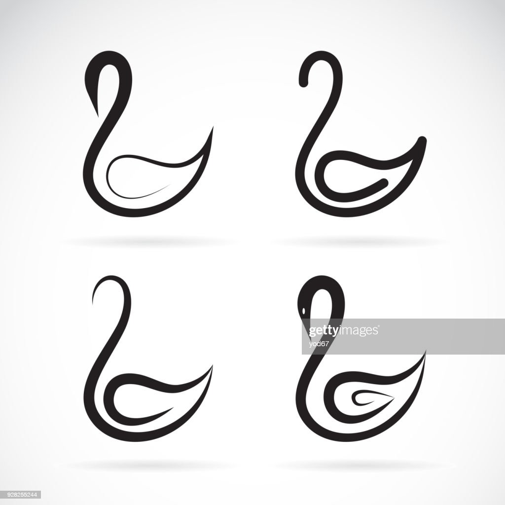 Vector of a swans design on a white background. Bird. Wild Animals. Easy editable layered vector illustration.