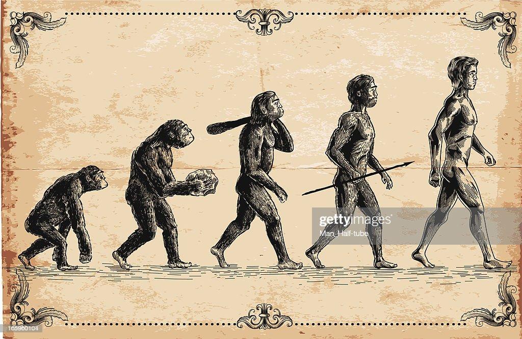Vector of human evolution concept : stock illustration