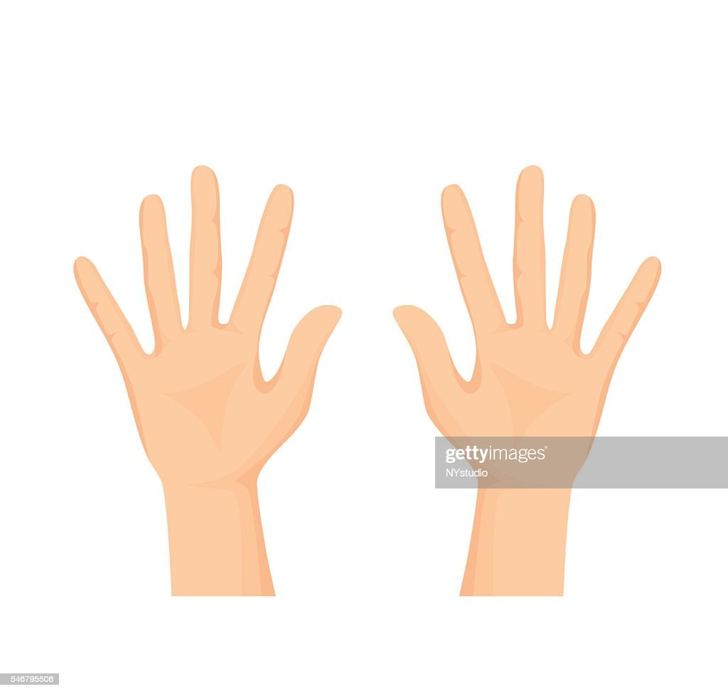 Vector of Opened palm of the hand