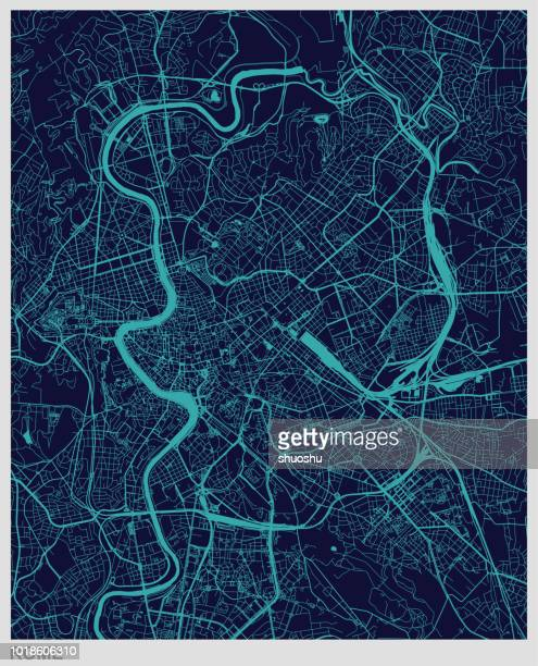 vector of Rome map texture background
