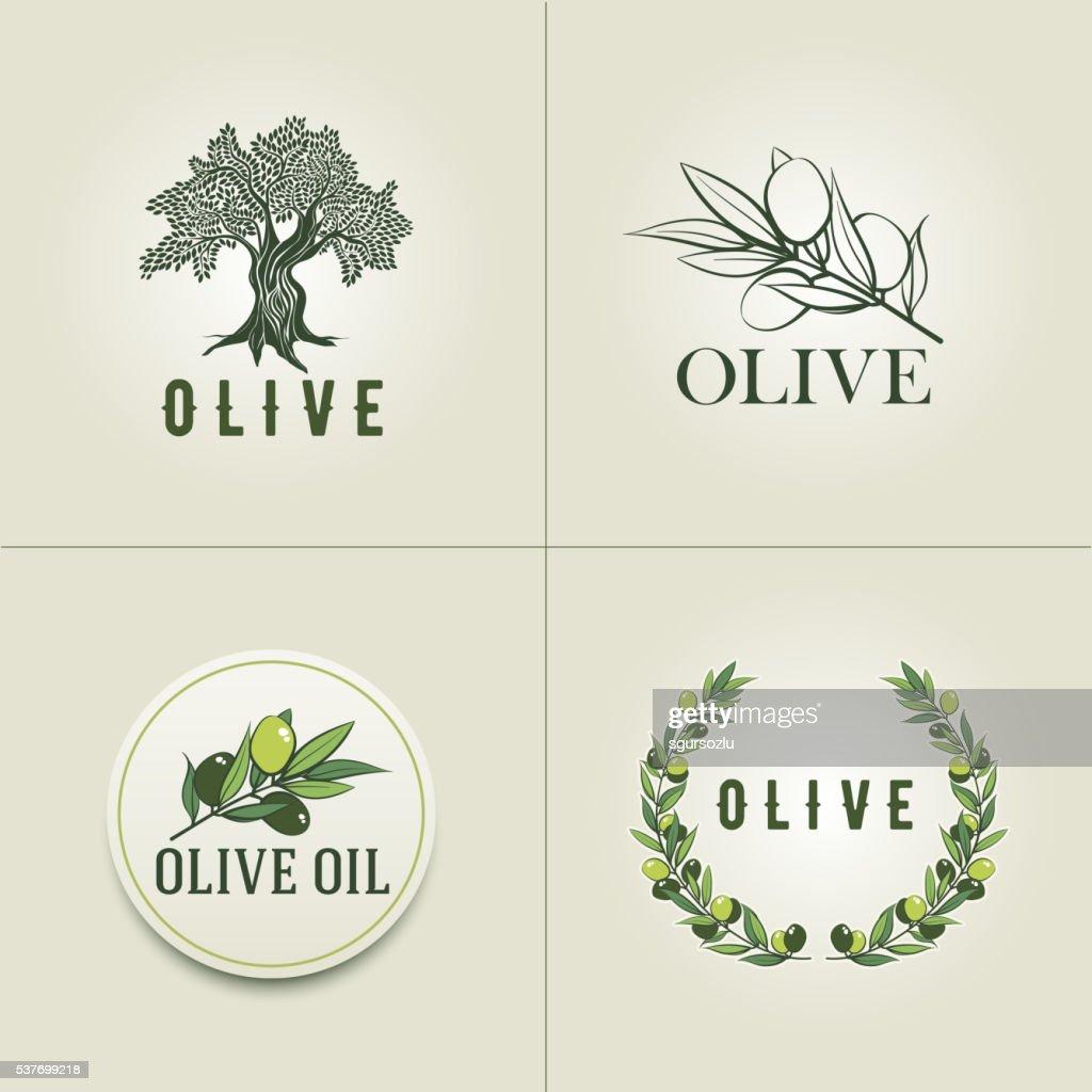 Vector olive design template set.