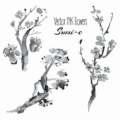 Vector oriental plants: pine branch, cherry, sakura, hand drawn