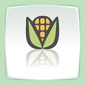 Vector outline ear of corn icon. Modern infographic icon and pictogram.
