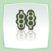 Vector outline pea beans in pod icon. Modern infographic icon and pictogram.