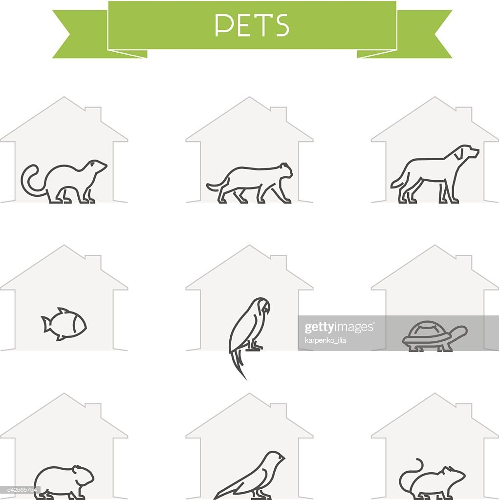 Vector outline silhouettes domestic animals