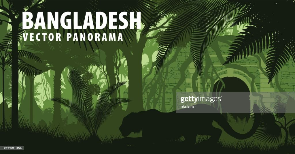 vector panorama of Bangladesh with tiger near jungle temple