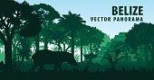 vector panorama of Belize with jungle raimforest, tapir and ancient Mayan ruin